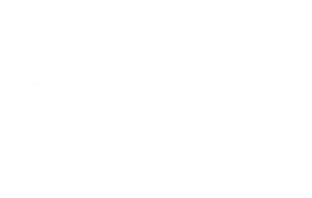 Best E-commerce Campaign