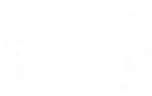 Best In Search